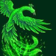 Phoenixboi586